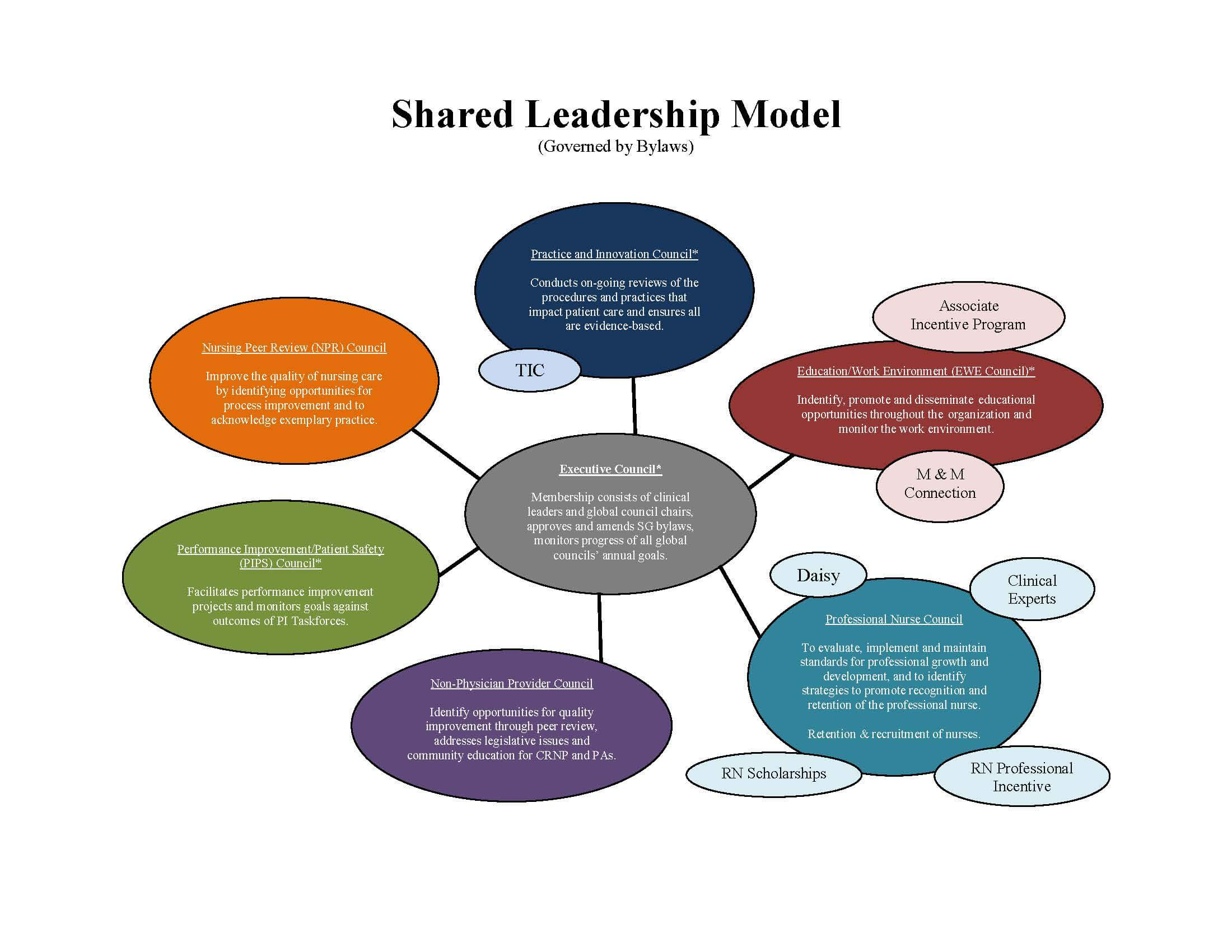 Shared Leadership bubble graph
